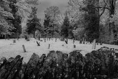 Red Oak Cemetery — Union Township, Brown County, Ohio (Pythaglio) Tags: cemetery redoak ripley ohio unitedstatesofamerica presbyterian historic early graves stones gravestones trees markers browncounty uniontownship grass stone