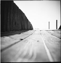 There... (Manuel&TheSea) Tags: monochrome mediumformat medium format filmphotography ishootfilm tlr analoguephotography analogue bw iso50 ilfordfilm film ilford panf50 panf ilfordpanf50 somberthiotparis luxoflex atos2 6x6 squareformat 120film vintagecamera vintage 50scamera 50s 50stlr twinlensreflex wood deck