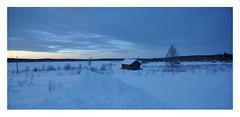 Blue Planet, on t'aime ! (Save planet Earth !) Tags: lapland laponie finland amcc nikon travel hiver winter landscape snow blueplanet