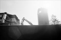 dead civics #5 (generalzorn) Tags: pentaxk1000 vivitar19mm ilforddelta100 film
