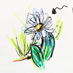 Beau temps. (Ceha :-)) Tags: dessin croquis esquisse drawing sketch coloredpencils crayondecouleur fleur flower spring paqurette