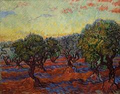 Olive grove (Bosc d'Anjou) Tags: sweden göteborg göteborgskonstmuseum gkm gothenburgmuseumofart dutchart vangogh painting olivegrove