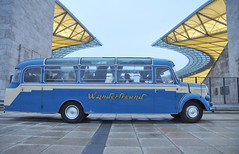 WM Bus 1954 O3500 am Olympiastadion, März 2011