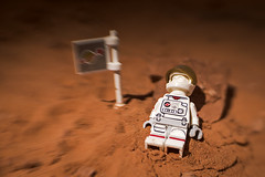 """""""(As brain cells die from oxygen starvation, euphoria sets in, and one last, grand erection.)"""" ― Mary Roach, Packing for Mars: The Curious Science of Life in the Void (Shelly Corbett Photography) Tags: lego legography legophotography space astronaut mars lensbaby blur toyphotographers toys just for fun"""