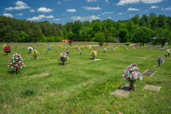 American cemetery (agasfer) Tags: 2019 southcarolina sony a6000 travellersrest sonye2820