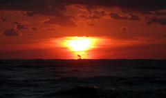 nuclear sun (d a r i u s) Tags: nuclearsun dawn alba sea mare nwn