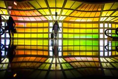 The Technicolor Phase (Thomas Hawk) Tags: america chitown chicago cookcounty illinois julia juliapeterson michaelhayden ohareinternationalairport skysthelimit usa unitedstates unitedstatesofamerica airport mrsth neon spouse wife fav10 fav25 fav50 fav100