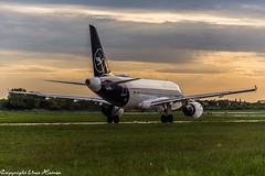 Lufthansa D-AILK (U. Heinze) Tags: aircraft airlines airways airplane lufthansa haj hannoverlangenhagenairporthaj eddv nikon d610 nikon28300mm