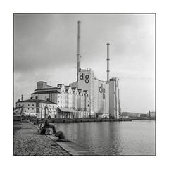 Working at the harbour (K.Pihl) Tags: rolleiflex35e monochrome kodaktmax100 aarhusharbour planar75mmrolleiflex rodinal1100 blackwhite schwarzweiss bw pellicolaanalogica analog film
