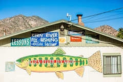 Fly Fishing (Thomas Hawk) Tags: america california kern kerncounty kernriver kernville sierranevada usa unitedstates unitedstatesofamerica fish fishing flyfishing fav10