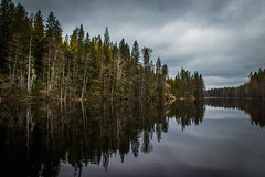 Trees (mabuli90) Tags: finland forest trees water lake spring creek clouds sky