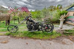 05-Motocyclette (Alain COSTE) Tags: 2019 hautevienne lavarache limousin nikon ocb printemps sigma20mmf14 eymoutiers france musée de la récup muséedelarécup