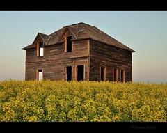 subtle moon (Gordon Hunter) Tags: moon window evening yellow crop canola old abandoned house home country rural wood weathered prairies simple ab alberta canada gordon hunter nikon d5000