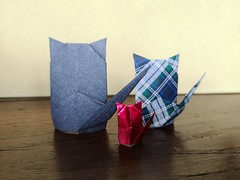 Rear-view Cat - Wayne Brown. (Stefano Borroni (Stia)) Tags: origami origamipaper origamicdo origamilove origamiart piegarelacarta arte folding foldingpaper papiroflexia carta animali natura wwf scozzese gatti gatto cat cats dietro rear cdoitalia