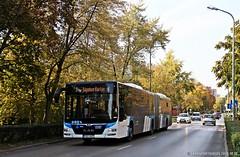 POC-827 (Az autóbuszok képtára) Tags: man manbusz manbus busz bus poc827 mártírokútja tatabánya tbusz hungary