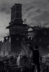 """Arrival"" (L1netty) Tags: theevilwithin tangogameworks bethesdasoftworks bethesda pc game reshade screenshot virtual digital 4k character sebastiancastellanos sebastian man male people sky clouds birds buildings blackandwhite monochrome bw outdoor pcgaming videogame"
