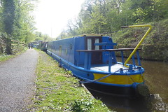 Big Blue lady, Whaley Bridge   (Peak Forest Canal)   May 2019 (dave_attrill) Tags: barge moored towpath whaleybridge peakforest canal peakdistrict nationalpark derbyshire may 2019 cheshirering waterway