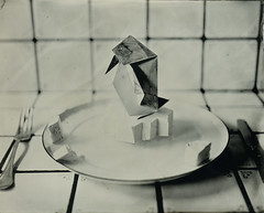 Origamis speak (cedricmarino) Tags: collodion wet plate old process 4x5 large format pingouin planet animals extinction biodiversity