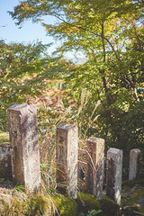 Kurama hike (French Vadrouilleur) Tags: japan montains ancien wood sky blue green tree stairs stones