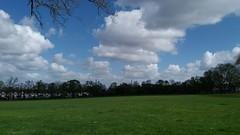 Ruskin Park (John Steedman) Tags: london uk unitedkingdom england イングランド 英格兰 greatbritain grandebretagne grossbritannien 大不列顛島 グレートブリテン島 英國 イギリス ロンドン 伦敦 ruskinpark camberwell se5