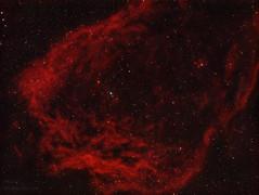 The Bat nebula (MaGeOl) Tags: nebula astrophoto astrophotography astronomy stars space sky star telescope filters dust texture galaxy galaxies night light dark bat astrometrydotnet:id=nova3384137 astrometrydotnet:status=solved