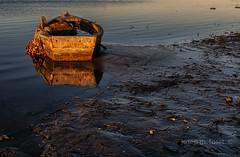 potser avui sortiré (Josep M.Toset) Tags: aigua barca catalunya d850 deltadelebre matinada josepmtoset mediterrani mar marina nikon pesca xarxes sol sortidadesol paisatges montsia nikonafs2470mmf28ged