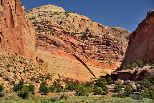 Canyon Walls Along the Capitol Gorge (Capitol Reef National Park)