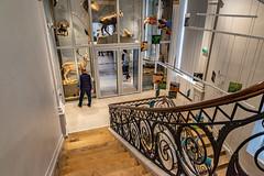 50-Rez de chaussée (Alain COSTE) Tags: bordeaux gironde france jardinpublic museum 2019 nikon