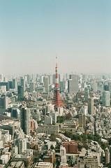 平成 (yanchengmc) Tags: heisei nikonfm nikon 50mm tokyo film japan fujic200 tokyotower filmphotography 201902 東京 日本 菲林 菲林攝影 平成 東京鐵塔 東京タワー フィルム写真 フィルム