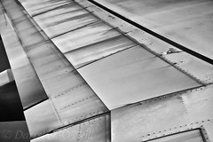 Alar Stylings 9 (LongInt57) Tags: aircraft airplane jet wing airport seatac seattle washington usa bw monochrome black white grey gray