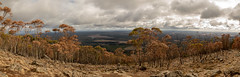 Mount Macedon (dmunro100) Tags: summit mountmacedon autumn australia victoria panorama