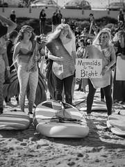 hands across the sand 2019 - brighton beach - 5050299 (liam.jon_d) Tags: bigoildontsurf fightforthebight handsacrossthesand gab gaba mono action adelaide arty australia australian bw billdoyle blackandwhite brighton brightonbeach brightonjetty climate climatechange coast coastal community costume equinor esplanade event globalwarming greataustralianbight greataustralianbightalliance mermaid mermaidcostume monochrome nopsema norway norwegian norwegiangovernment oil oildrilling peopleimset pickmeset portrait portraitimset protest public rally rallyingimset sa southaustralia southaustralian statoil suburb suburban transnational