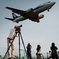 1613 (YamatoHishino) Tags: plane airport japan osaka itami sony α7 α7ⅲ a7 tamron tamron2875 landscape 空港 飛行機 伊丹空港 千里川土手