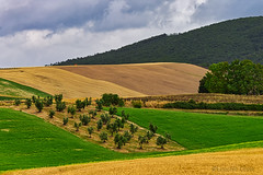 La campagna toscana: Orciano (7) - The Tuscan countryside: Orciano (7) (Eugenio GV Costa) Tags: approvato toscan toscana campagna nuvole cielo alberi countryside clouds sky trees outside