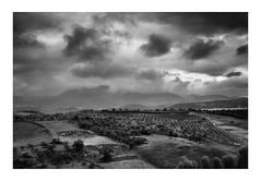 Towards the Valley in | Ronda, Spain (www.davidrosenphotography.com) Tags: landscape ronda spain travel storm clouds mono monochrome canon eos 50d