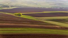 Утро #maksileni, #Максименко_Леонид, #Leonid_Maksimenko, #Landscapephotography, #своифото, #пейзаж, #природа, #утро, #рассвет, #дерево, #натура, #восход, #sunrise, #nature, #tree, #Landscape, #sun, #туман, #лучи, #foggy, #природа, #небо, #небоголубое, #со (ЛеонидМаксименко) Tags: bestofrussia uralinsta сониа6000 maksileni leonidmaksimenko natgeoru foggy nature небо природа натура дерево etonashural sun рассвет своифото sunrise natgeorussia сониальфа landscapephotography пейзаж восход sonyalpha небоголубое утро sonya6000 лучи tree landscape natgeoyourshot туман максименколеонид россия урал уральскиегоры russia ural
