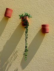 Hanging Flower Pots (Bob (sideshow015)) Tags: shad ombres fleurs pots suspendusnikon 7100 floride étatsunis shadows flowers florida usa hanging nikon wall