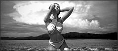 (horlo) Tags: nb bw blackandwhite noiretblanc monochrome film movies cinema portrait fonddécran wallpaper glamour actress vintage woman femme sandrakubicka collage