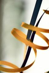 Blowing in the Wind (helensaarinen) Tags: macro ribbon air fourelements macromondays