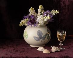Lilac Posy (Sue_Hutton) Tags: centauri may2019 spring flowerphotography glass lilacs no35 posy pot shells sherry stilllife