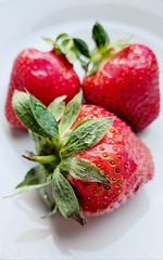 (Rhia.photos) Tags: strawberry strawberries 3 three spring springtime red green white depthoffield dof photography photo photograph image composition perspective hss sliderssunday happysliderssunday oneplus oneplus6t