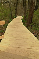 Our upgraded boardwalk