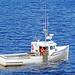DSC03479 - Bay Bliss brings in the Lobster Trap