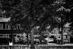 street (schrst) Tags: black white blackandwhite bw nikon d3400 outside blackwhitephotos blackwhite nikond3400 55200mmlens