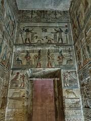 Dendera Temple (Amberinsea Photography) Tags: temple egypt egyptology hieroglyphs amberinseaphotography dendera denderatemple ancientegypt art egyptianart ancientegyptianart amazingegypt ägyptologie ancientworld ägypten ancient