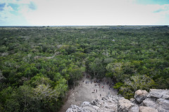 View of the Yucatán Jungle Landscape from top of Nohoch Mul Pyramid - Cobá Maya Ruins - Coba Mexico (mbell1975) Tags: tulum quintanaroo mexico view yucatán jungle landscape from top nohoch mul pyramid cobá maya ruins coba peninsula yucatan mayan archeological park parc forest woods tree trees treetop paysage
