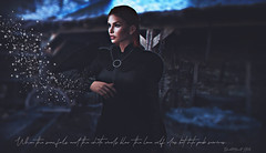 the lone wolf die #Theironthronephotocontest #contestentry (Danielle Hinault) Tags: got samsa enchantment secondlife gameofthrones stark winterfell handsofgold wolf huargo