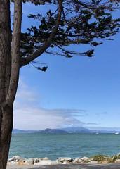 Natural View (Melinda * Young) Tags: nature view park frame tree mountain ca bay harbor