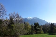 Hike to Mont Orchez (*_*) Tags: spring printemps 2019 morning matin europe france hautesavoie 74 montorchez marche walk randonnee mountain montagne hiking nature savoie chablais may mai surlecoux