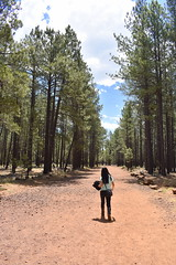 Lava River Cave in Coconino National Forest (Pictures by Ann) Tags: olivia arizonatrip arizona2017 arizona az cocochino coconinonationalforest lavatubes unsupervised onyourown explore exploration fun discovery underground cold chilly flagstaff tallpines